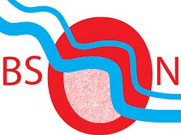BSON logo